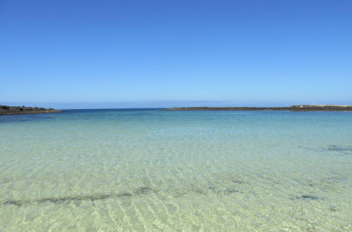 playa de la Concha, beautiful beach in El Cotillo (Fuerteventura).