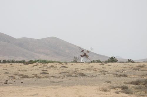 windmill Lajares